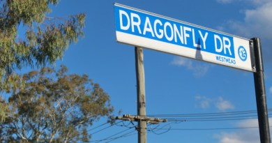 New Road will now be known as Dragonfly Drive.