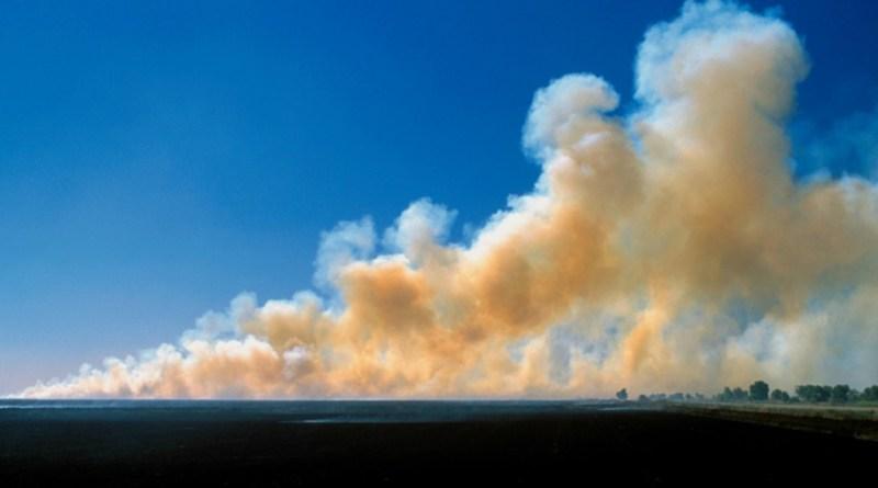 Bushfire smoke across Sydney