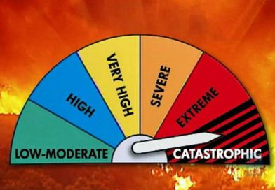 NSW bushfires: Important health and safety information