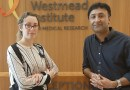Westmead research unearths one key to stop ageing