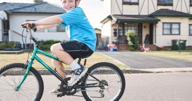 Healthy and active family program goes online
