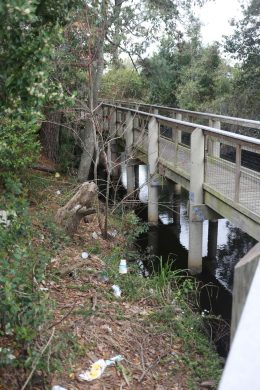 Trash and litter lines the banks and trail on the Southwest Greenway in Escambia County.
