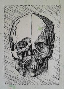 Mel Telfer linocut of da Vinci's skull illustration