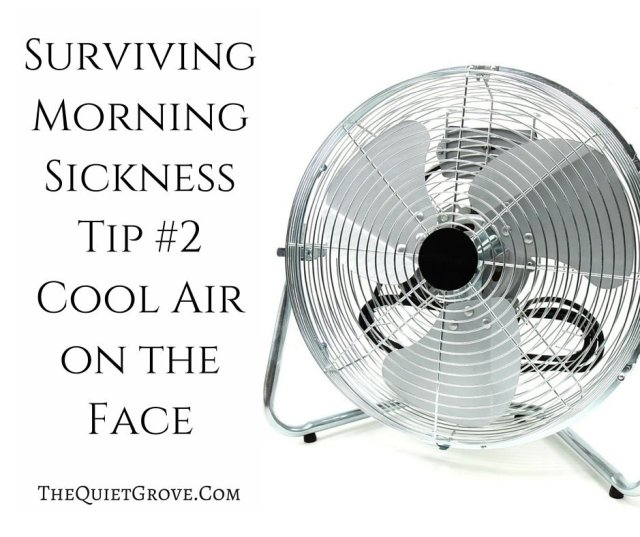 Surviving Morning Sickness Tip #2 Cool Air on the Face