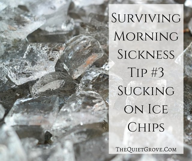 Surviving Morning Sickness Tip #3 Sucking on Ice Chips