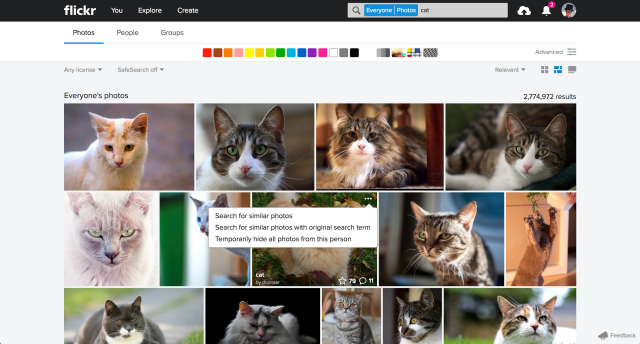 flickr image search