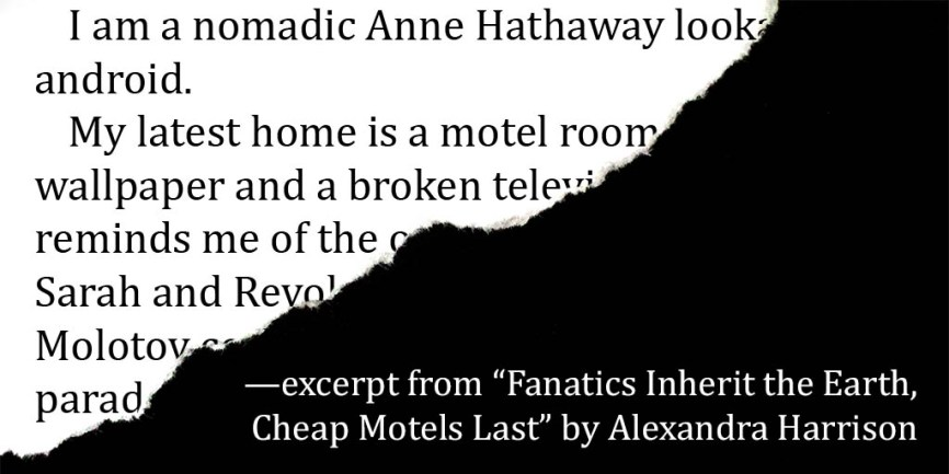 "excerpt from ""Fanatics Inherit the Earth, Cheap Motels Last"" by Alexandra Harrison"