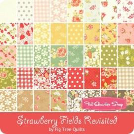 strawberryfieldsrevisited-bundle-450_37