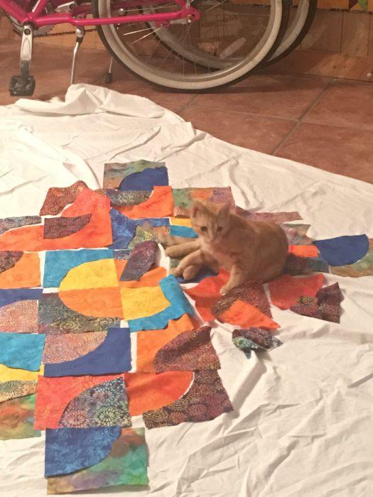 Kitten scattering fabric