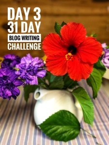 Day 3 of the #31dayblogchallenge