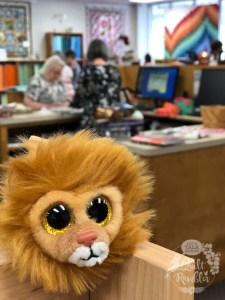 little lion Judah at Pinwheels and Posies