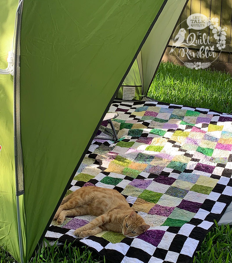 Cats and quilts, Checking The Boxes by Karen Overton