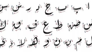 Why Is It Important to Learn Arabic Letters? | Learning Arabic online