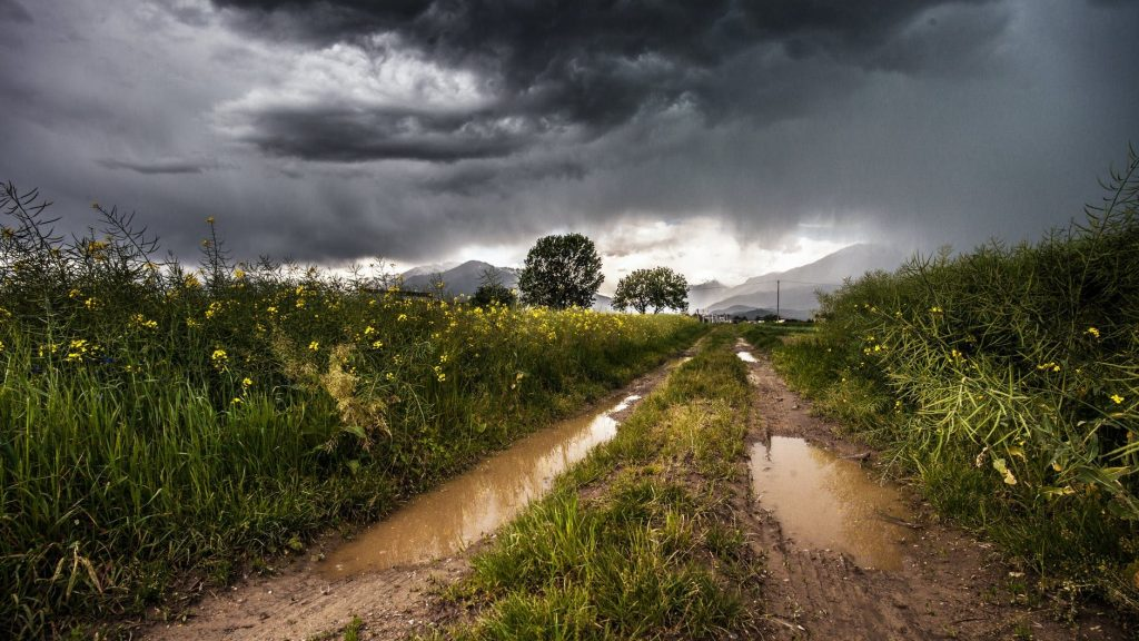 country lane field meadow puddles