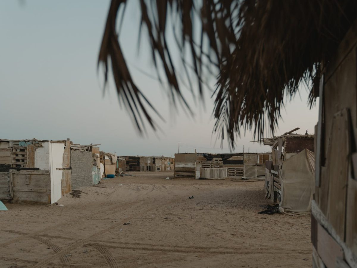 white concrete houses near palm trees