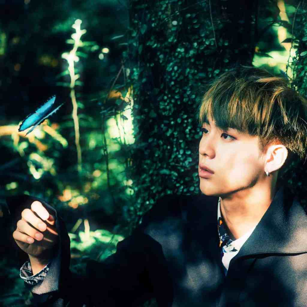 The photo here features member Jin in the forest with a blue butterfly