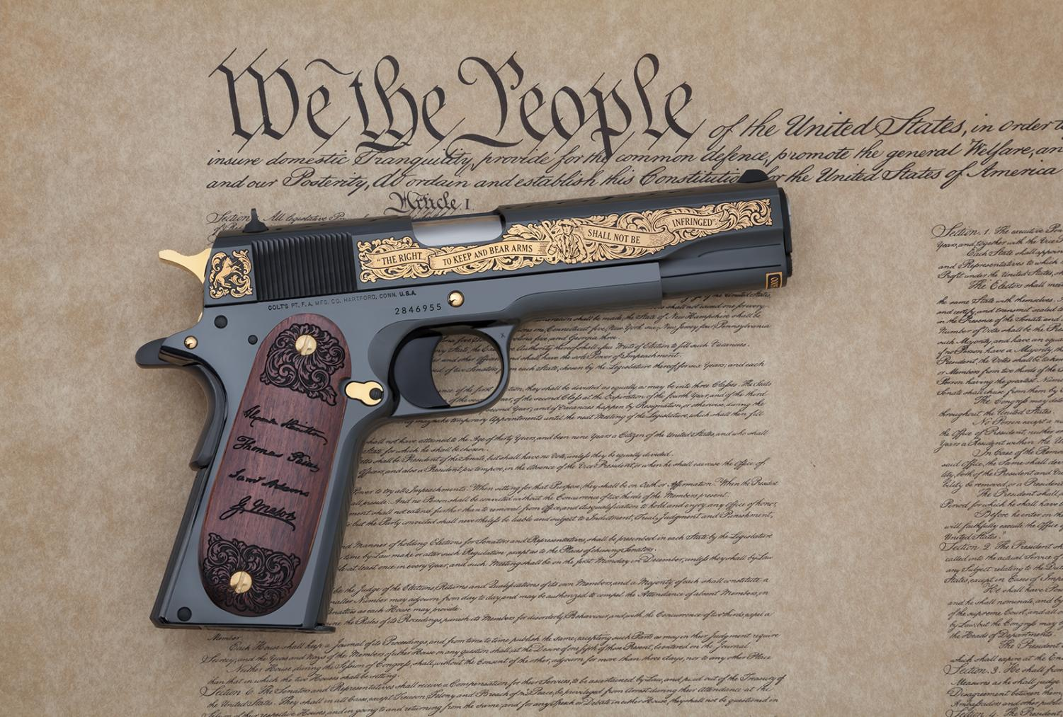 'Seventeen outstanding new reasons ... to question the Second Amendment'