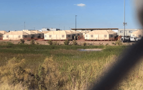 Letter to the Editor: Witness Tornillo