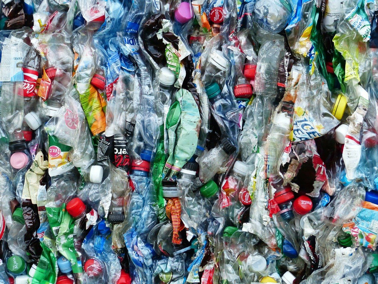 The New Era of Globalisation: Plastic Pollution