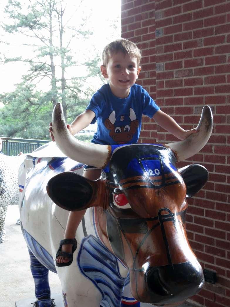 Riding a Durham Bull.