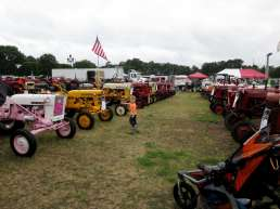 Guys, guys, do you see all these tractors?!?!