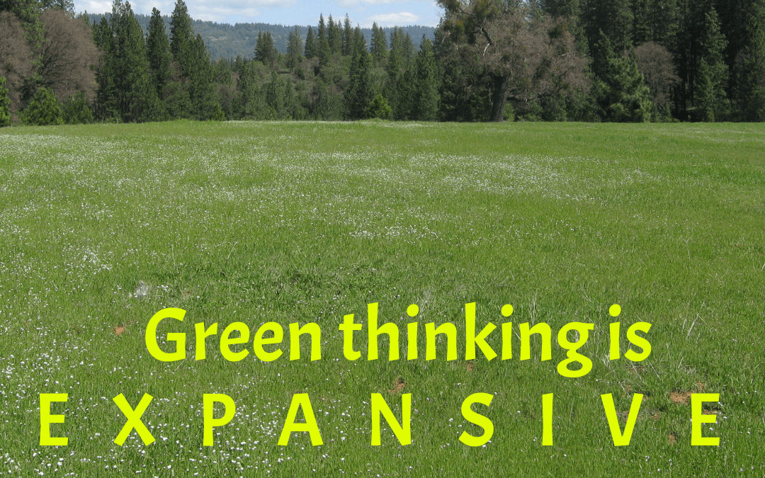 Green thinking is expansive