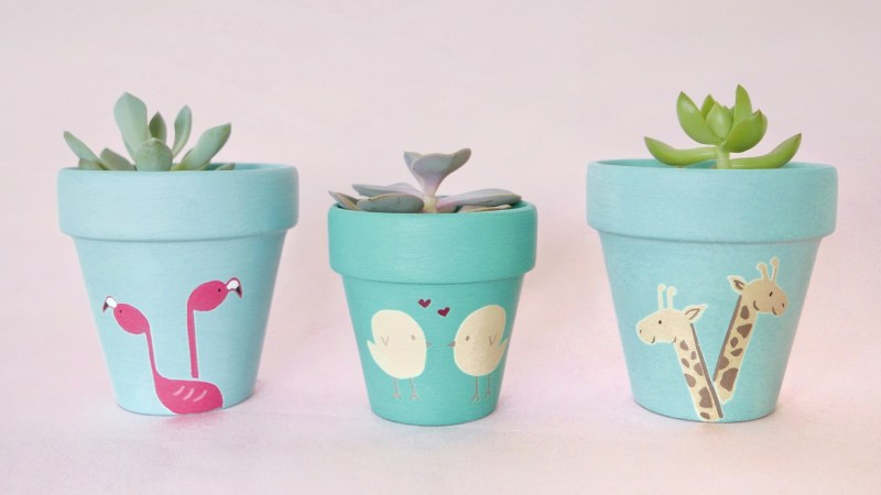 Flamingos, Lovebirds, Giraffes Pots