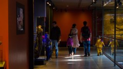 The young and younger observe displays in the upstairs space of the museum's dinosaur exhibit.