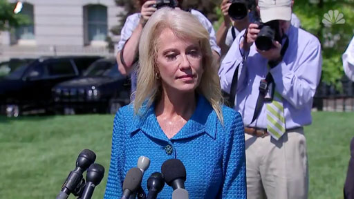 While taking questions from reporters on the White House driveway, White House counselor Kellyanne Conway flipped out a bit over questions regarding Donald Trump's attacks on four congresswomen of color by asking a reporter about his ethnicity.