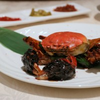Snippets: Hairy Crab Season 2016 | 4 worthy restaurants to savour that golden roe this year