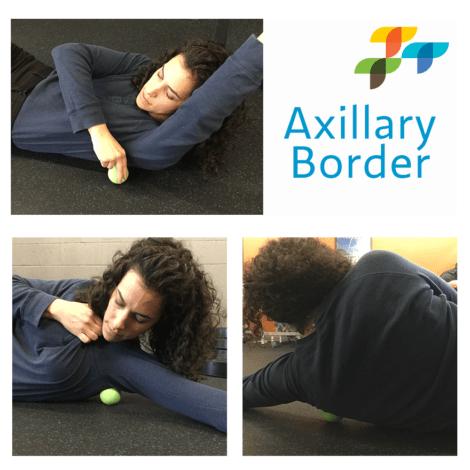 axillary-border-exercise