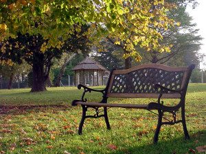 Autumn, empty park bench | Grief, Loss & Bereavement Counseling | Jennifer Levin | Therapy Heals | Pasadena, CA 91106