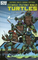 Teenage Mutant Ninja Turtles Vol 5 #51 Regular Ken Garing