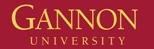 gannon-university