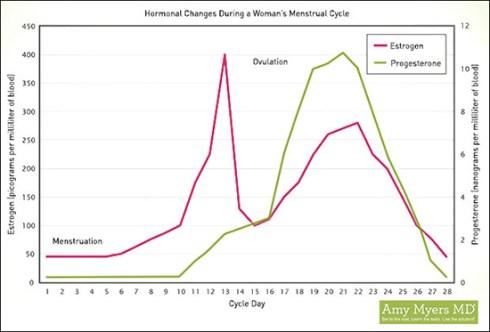 hormones_menstruation