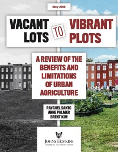 Vacant Lots to Vibrant Plots cover