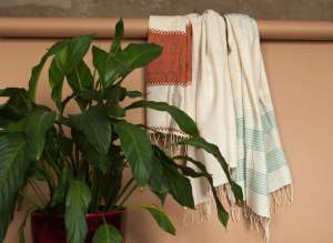 Plant an in the background Colourful Cotton Beach Towels handmade quality from Ethiopia