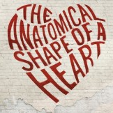 the anatomical shape of a heat