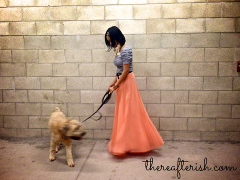 thereafterish, ootd, coral knife pleat maxi skirt, stripes, wheaten terrier, asian street style