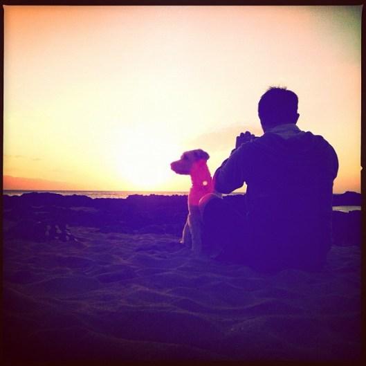 Pupukea Sunset, Hawaii Sunsets, Wheaten Terrier, Oahu