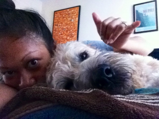 thereafterish, hawaii life, wheaten terrier, tropical storm flossie, flossie, storm prep flossie, day in the life