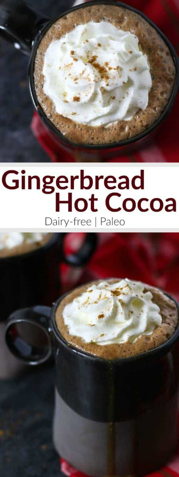 Dairy-free Gingerbread Hot Cocoa | In this Dairy-free Gingerbread Hot Cocoa that's sweetened with honey and molasses and spiced just right you get it all - cookies and cocoa - in one soul-warming mug topped with whipped coconut cream, if you please | Paleo | therealfoodrds.com