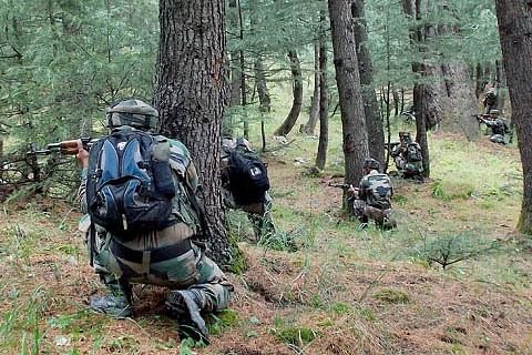 01 more militant killed, toll reaches 03 in Shokbaba forest area of North Kashmir's Bandipora, Operation on