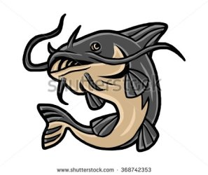 stock-vector-catfish-seafood-image-vector-368742353