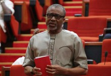 Photo of Nigeria running 'Kabiyesi Democracy' where Buhari is king of kings — Senator Eyinnaya Abaribe