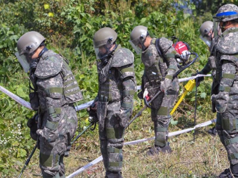 Can Washington's Hawks Sabotage Korea's Peace?
