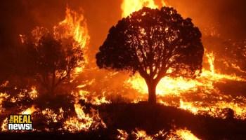 Climate Crisis: Historic Arizona Wildfires May Worsen COVID-19