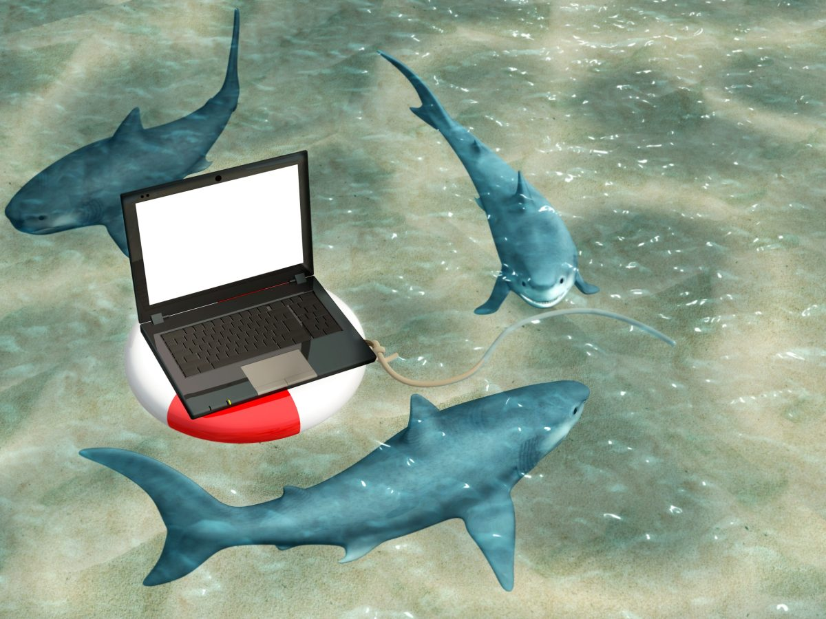 Illustration of three sharks circling a laptop floating on a life preserver.