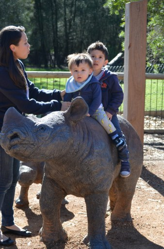 The boys on a rhino statue