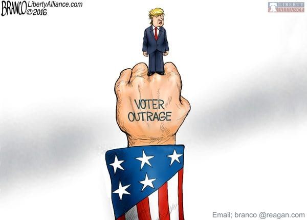 Image result for cartoons trump wins